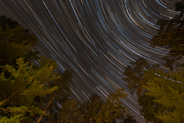 A star trail image taken from my patio, high up in the Smoky Mountains